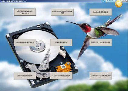 啄木鸟数据恢复大荟萃软件V10 1
