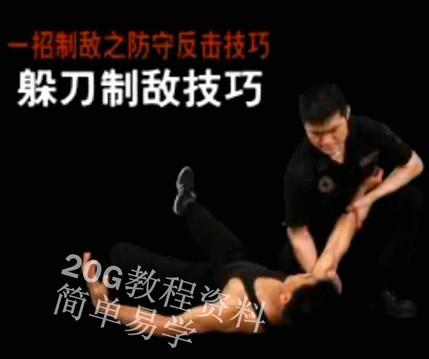防身术视频教程女子自卫格斗百招散打搏击术徒手街头武术教材实战0