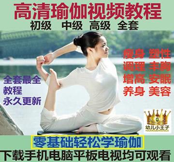 高清瑜伽视频教程 瑜伽初级入门零基础教学孕产妇瘦身丰胸减肥全