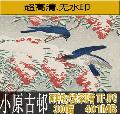 小原古�高清画集 花鸟虫鱼绘  浮世绘 木版画大图素材